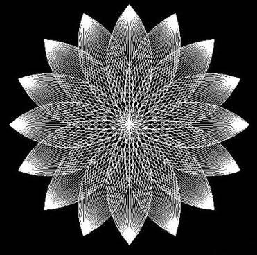 CAD中如何画莲花