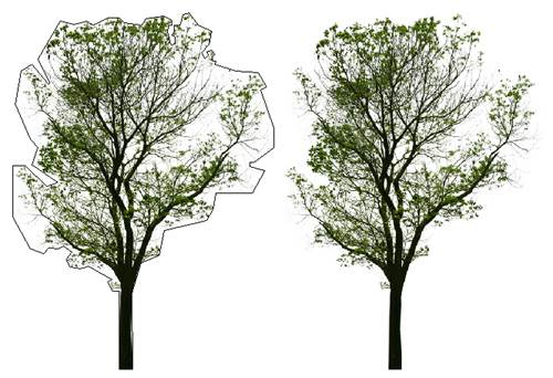 CAD图像边框不打印教程之怎样让图像边框不打印