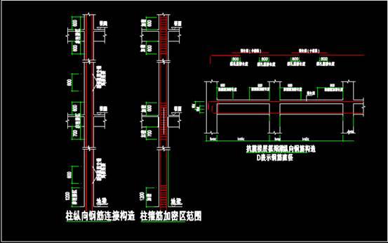 CAD建筑结构中钢筋布局图之钢筋大样图